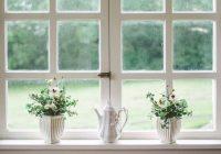La finestra di una casa con dei vasi che fioriscono.
